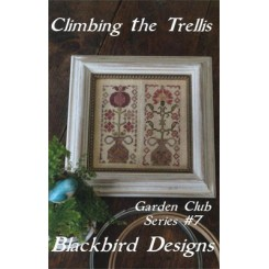 Garden Club Series 7: CLIMBING THE TRELLIS