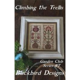 Garden Club Series 7: CLIMBING THE TRELLIS