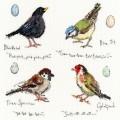 Garden Birds 2