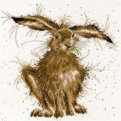 Hannah Dale - HARE BRAINED