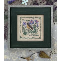 Botanical Stitches - Colorado Columbine