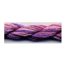 Purple Haze - DDS 002