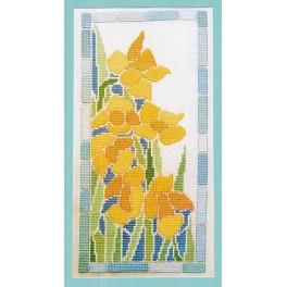Tiffany Daffodils