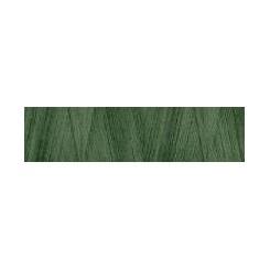 Aurifil Cotton 28 - 2890